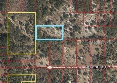 03223-022-00, Archer, FL 32618 (MLS #V4913773) :: Southern Associates Realty LLC