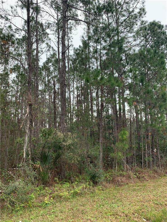N Prevatt, Deland, FL 32724 (MLS #V4917340) :: The Heidi Schrock Team