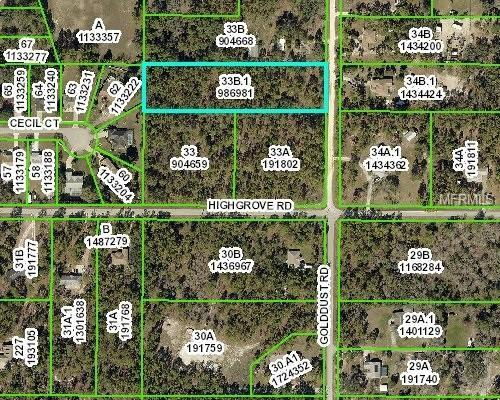 Golddust Road, Brooksville, FL 34609 (MLS #W7800628) :: The Duncan Duo Team