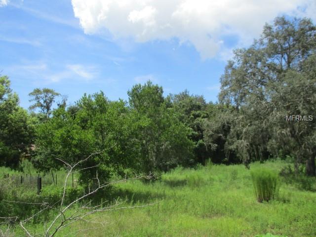 0 Turkey Shoot Road, New Port Richey, FL 34654 (MLS #W7803687) :: The Duncan Duo Team