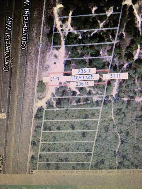 6448 Commercial Way, Weeki Wachee, FL 34613 (MLS #W7805164) :: Team Buky