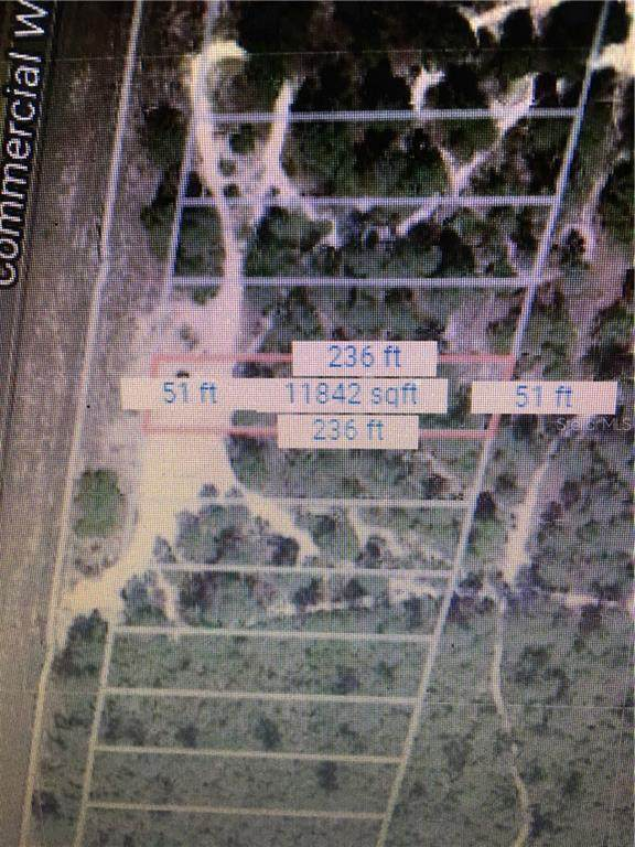 6454 Commercial Way, Weeki Wachee, FL 34613 (MLS #W7805165) :: Team Buky