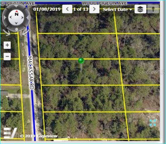 Macassar Road, Weeki Wachee, FL 34614 (MLS #W7815536) :: Cartwright Realty