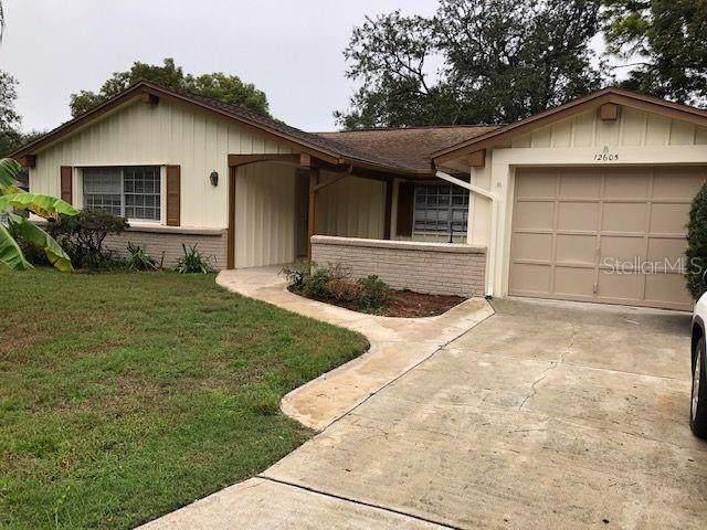 12605 Blackberry Row, Hudson, FL 34667 (MLS #W7818106) :: Cartwright Realty