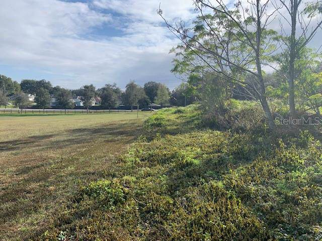 Powell Road, Brooksville, FL 34602 (MLS #W7819896) :: Team Bohannon Keller Williams, Tampa Properties