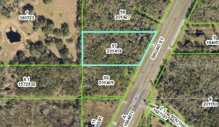 Broad Street, Brooksville, FL 34601 (MLS #W7830460) :: Premier Home Experts