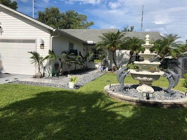 70 Squire Court, Dunedin, FL 34698 (MLS #W7833539) :: RE/MAX Marketing Specialists