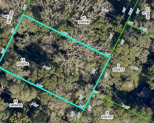 Monroe Avenue, Masaryktown, FL 34604 (MLS #W7837834) :: Vacasa Real Estate