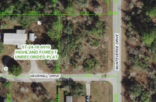 Monteverde, Spring Hill, FL 34610 (MLS #W7838182) :: Vacasa Real Estate