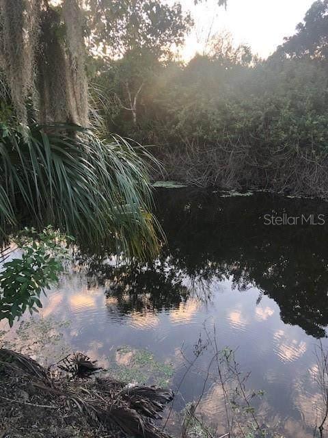 161 Flamingo Boulevard, Port Charlotte, FL 33954 (MLS #A4479847) :: Griffin Group