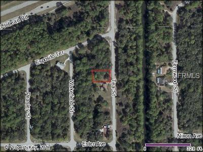 2083 Tea Street, Port Charlotte, FL 33948 (MLS #C7239365) :: The Duncan Duo Team