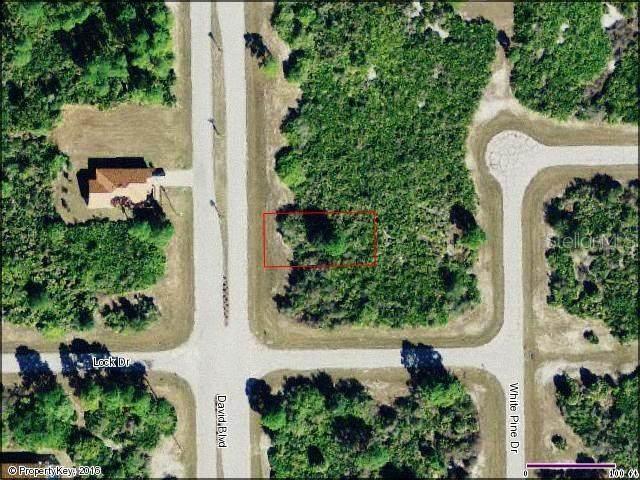 135 David Boulevard, Rotonda West, FL 33947 (MLS #D5910982) :: The Duncan Duo Team
