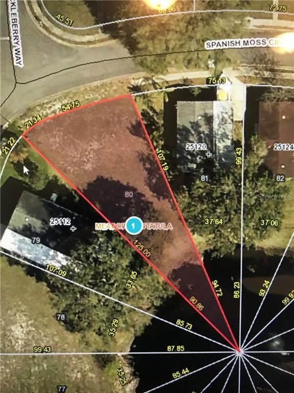 25116 Spanish Moss Circle - Photo 1
