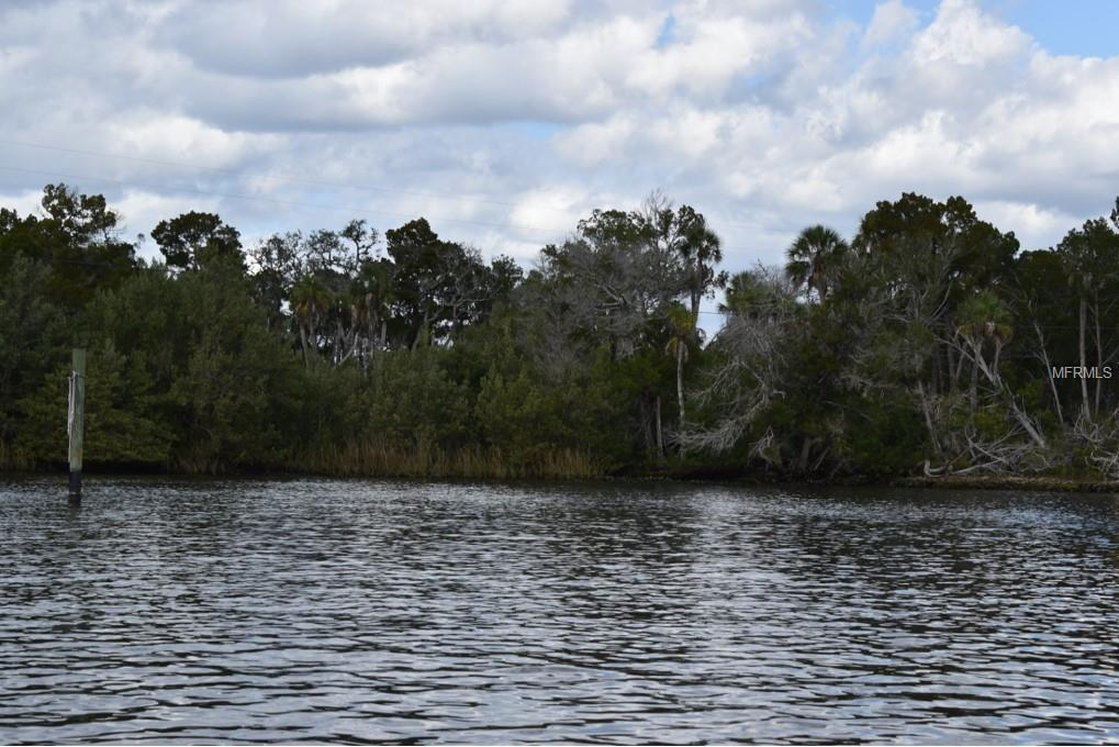 13225 The Homosassa River - Photo 1