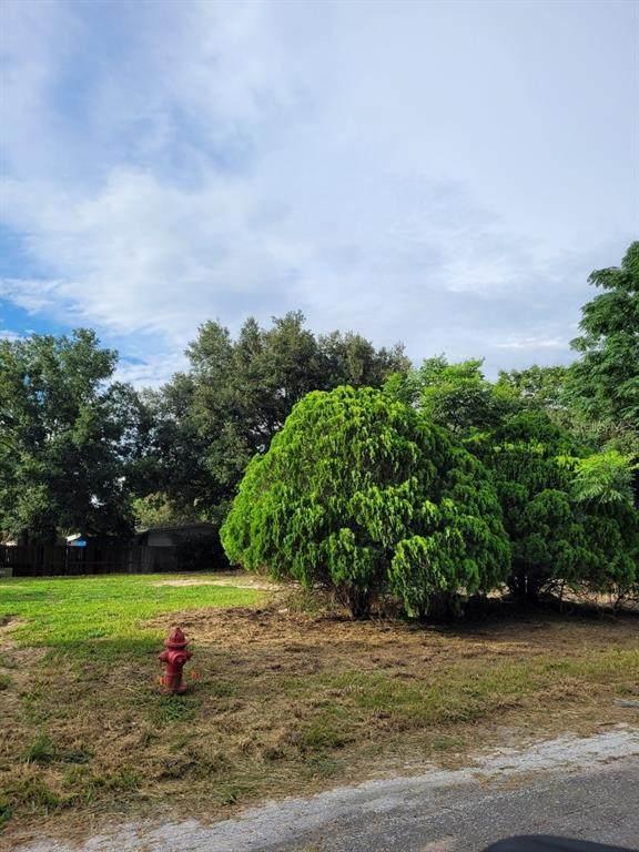 Palm Drive, Montverde, FL 34756 (MLS #G5043992) :: Better Homes & Gardens Real Estate Thomas Group