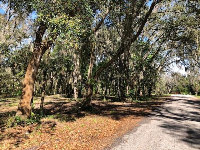 Pine Street Lot 2 - 6, Mulberry, FL 33860 (MLS #L4906261) :: The Duncan Duo Team