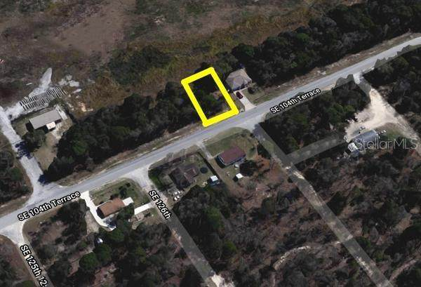 12657 SE 104TH TERRACE, Belleview, FL 34420 (MLS #O5956246) :: Premium Properties Real Estate Services