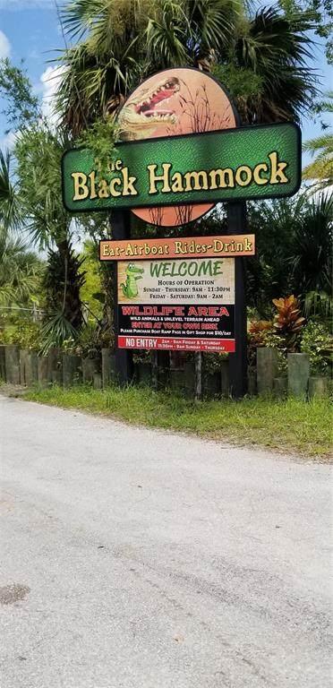 2315 Black Hammock Road, Oviedo, FL 32765 (MLS #O5971940) :: Cartwright Realty