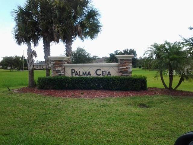 4022 Palma Ceia Circle, Winter Haven, FL 33884 (MLS #P4712023) :: Team Borham at Keller Williams Realty