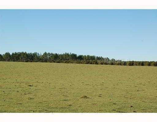 Frazee Hill Lot A, Dade City, FL 33523 (MLS #T2471584) :: The Duncan Duo Team