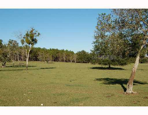 Frazee Hill Lot B, Dade City, FL 33523 (MLS #T2471586) :: The Duncan Duo Team