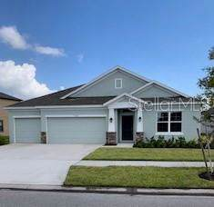 5070 Ivory Stone Drive, Wimauma, FL 33598 (MLS #T3131407) :: The Duncan Duo Team