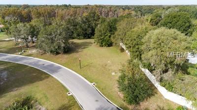 17044 Comunidad De Avila, Lutz, FL 33548 (MLS #T3140942) :: Mark and Joni Coulter | Better Homes and Gardens