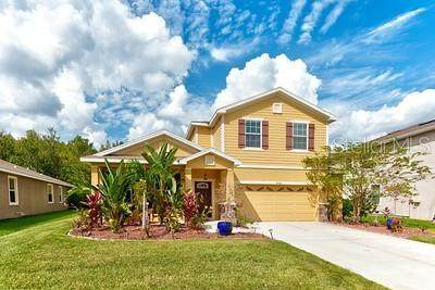27645 Stonecreek Way, Wesley Chapel, FL 33544 (MLS #T3331946) :: Everlane Realty