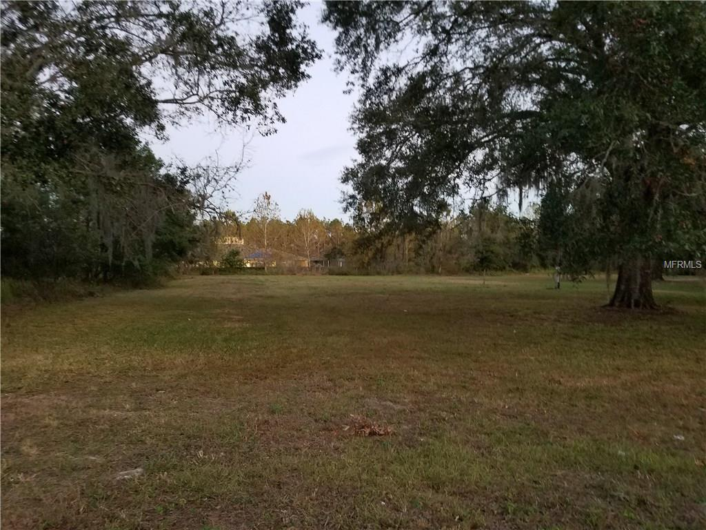 7846 Boyette Road - Photo 1