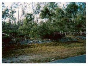 Paul Paper Street, Deltona, FL 32725 (MLS #V4711357) :: Rabell Realty Group