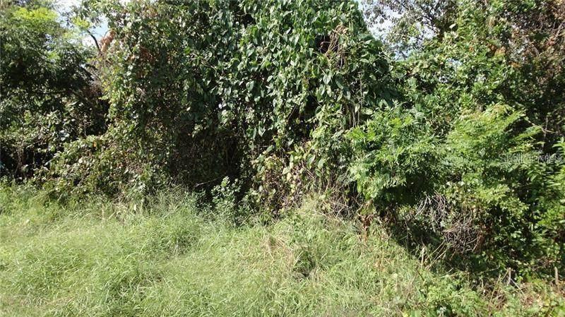 Underhill Branch Road - Photo 1