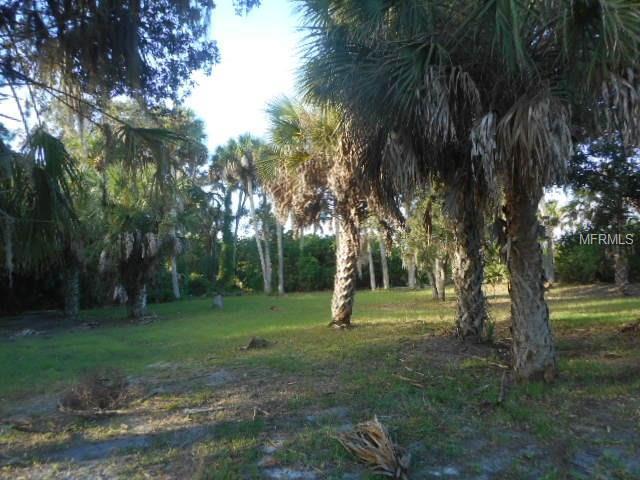5350 Koons Drive, Port Richey, FL 34668 (MLS #W7623648) :: The Duncan Duo Team