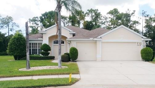 9019 Flagstick Lane, Hudson, FL 34667 (MLS #W7805568) :: Delgado Home Team at Keller Williams