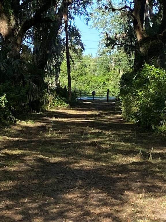 7112 Marsh Bend Trl, Wildwood, FL 34785 (MLS #G5012948) :: The Curlings Group