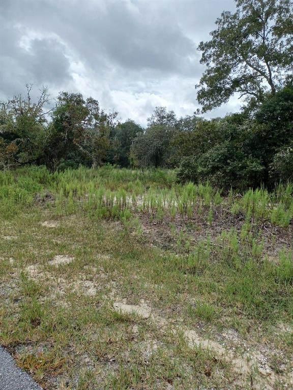 000 Sw Little Cliffs Dr, Dunnellon, FL 34431 (MLS #OM616632) :: Everlane Realty