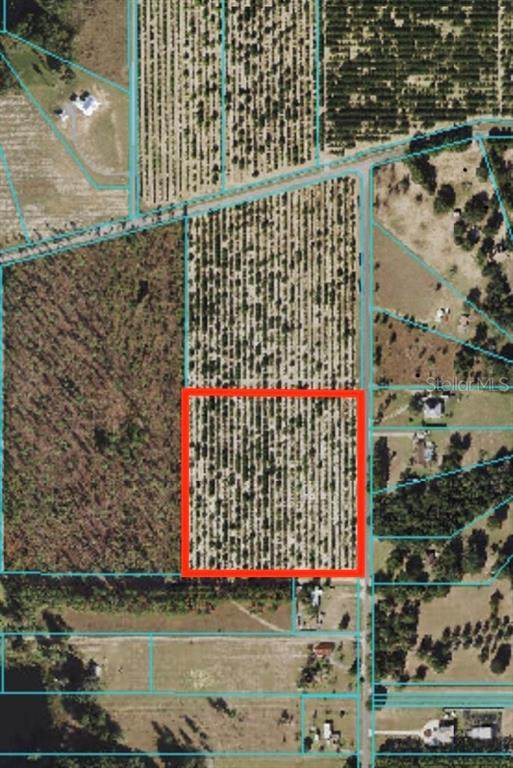 TBD SE 170TH AVE, Weirsdale, FL 32195 (MLS #OM619979) :: The Paxton Group