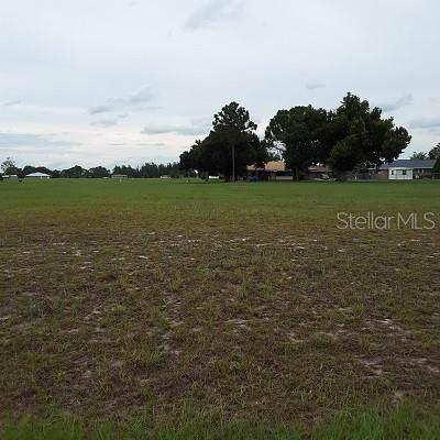 8217 Cozumel Lane, Sebring, FL 33876 (MLS #S5011021) :: Rabell Realty Group