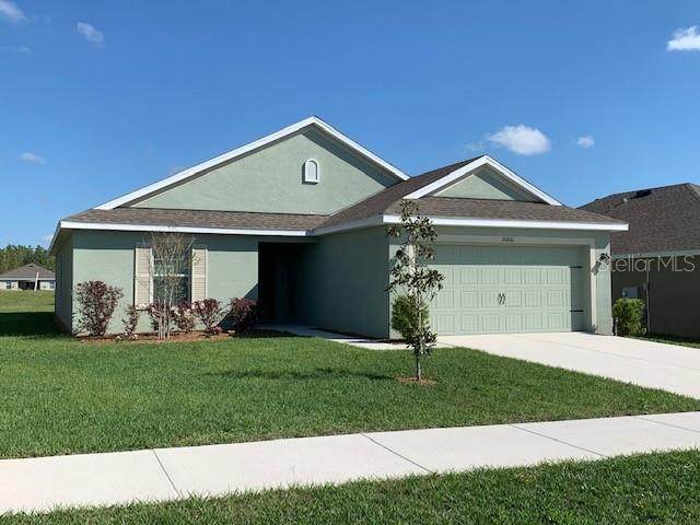 30861 Water Lily Drive - Photo 1