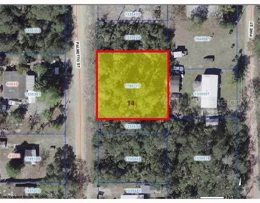 Palmetto Street ST, Paisley, FL 32767 (MLS #G4656680) :: The Lersch Group