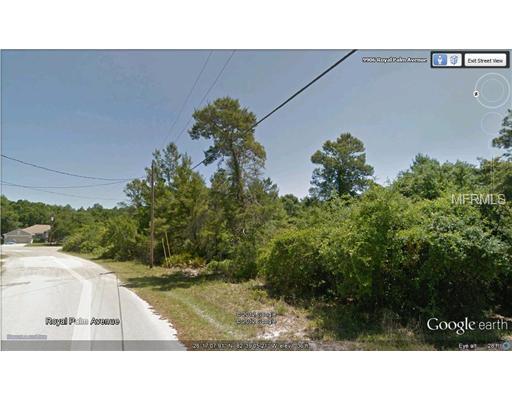 0 Royal Palm Avenue, New Port Richey, FL 34654 (MLS #W7523914) :: The Duncan Duo Team