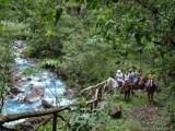 Costa Rica 3-16 The Spanish Village Rincon De La Vieja, Costa Rica - Photo 46