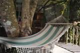 Costa Rica 00 - Photo 34