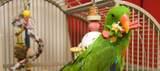 Bird wholesale Suppl 119th St - Photo 1