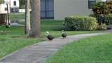 4965 Sabal Palm Blvd - Photo 64
