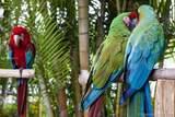 6841 Fisher Island Drive - Photo 84