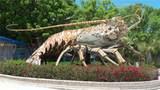 27395 Barbuda Ln - Photo 67