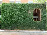 1558 Ne Quayside Terrace - Photo 57