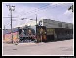 2150 Miami Ct - Photo 6