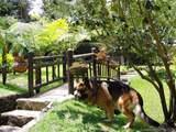 Llanogrande Rionegro - Photo 24