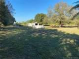 263 Horse Club - Photo 3
